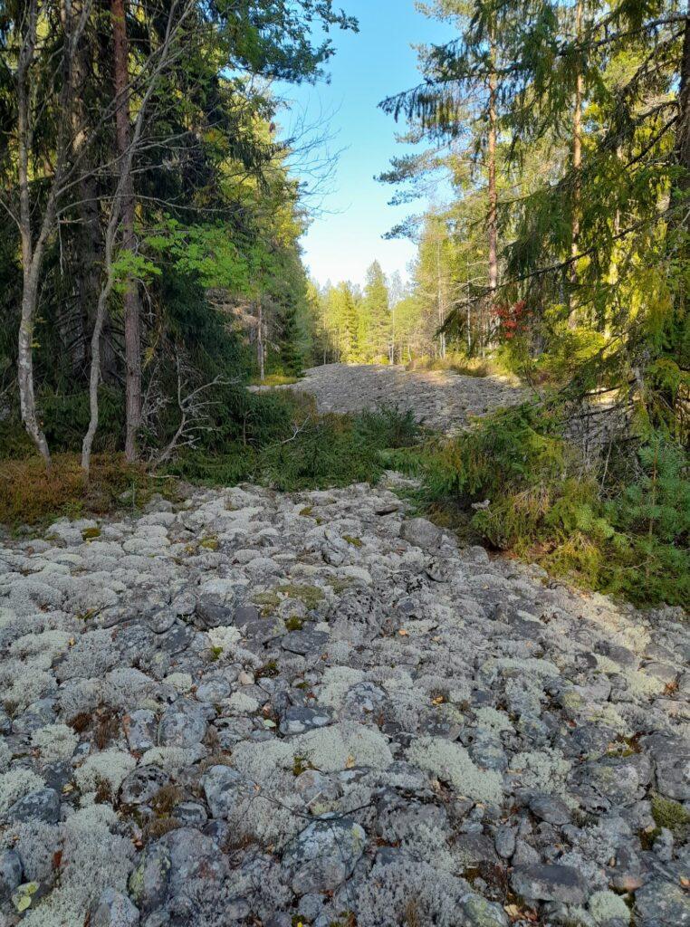 MTB i Bergslagen ~ Naturevent Bergslagen